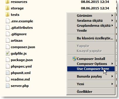 ScreenShot010